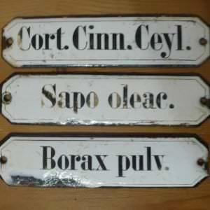 Beispiele lateinischer Begriffe